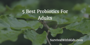 5 Best Probiotics For Adults