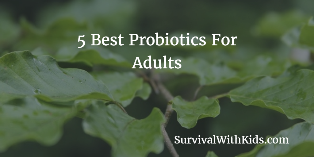 Featured Image for Best Probiotics For Adults